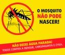 Projeto de Lei visa combate ao mosquito Aedes aegypti
